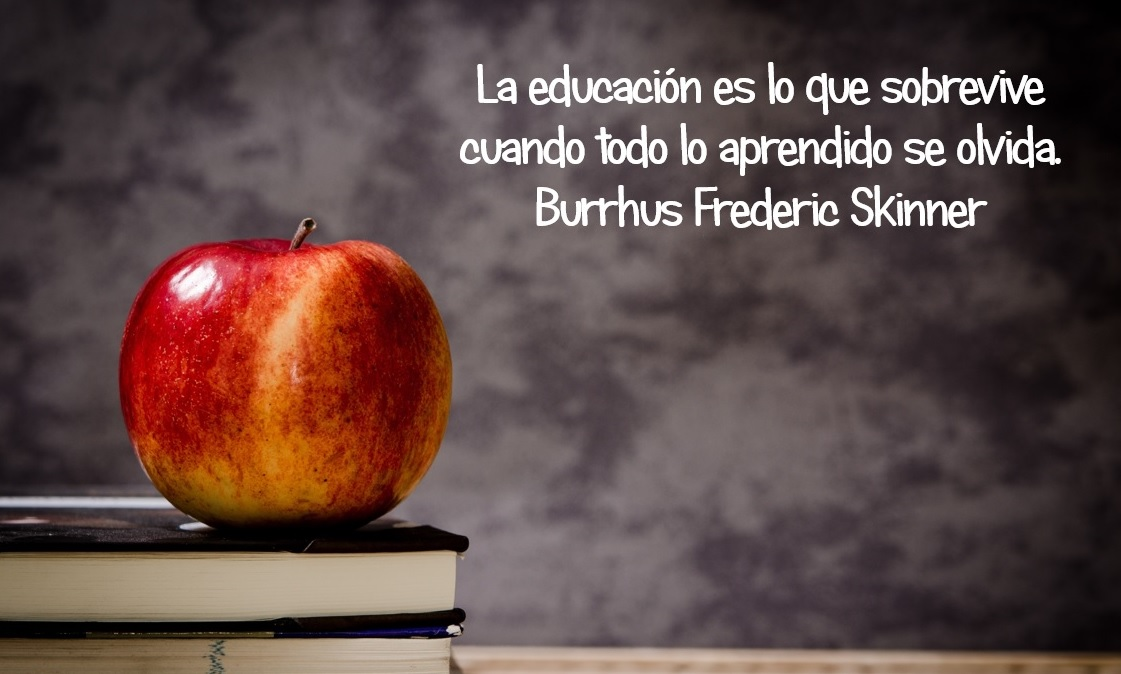 frases-sobre-educacion-11